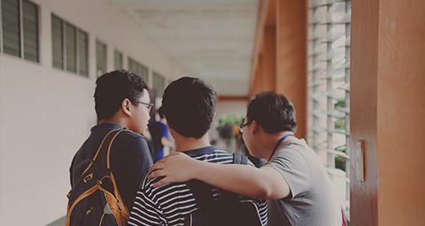 学院、学校行业网站建设解决方案
